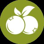 Beerengut Bauerngemeinschaft Straden Heidelbeeren