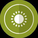 Beerengut Bauerngemeinschaft Straden Kiwibeeren